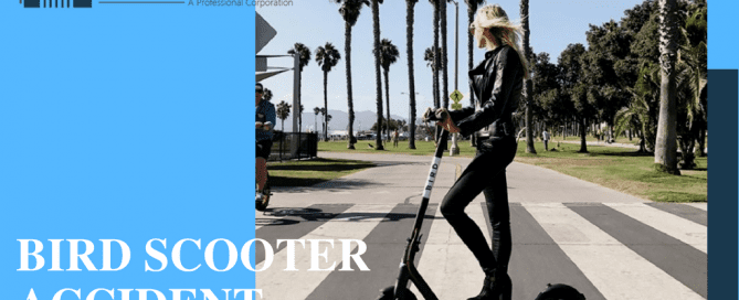 Bird scooter Accident