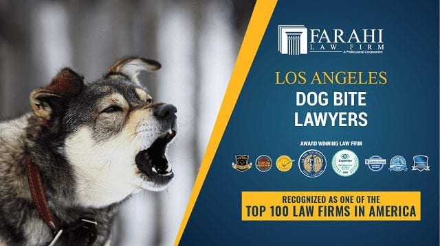 Los Angeles Dog Bite Lawyers