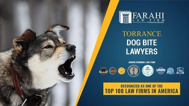 Torrance Dog Bite Lawyers